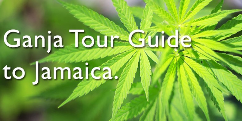 Jamaica's Ganja Tours – Sun, Sand Sea and Ganja!