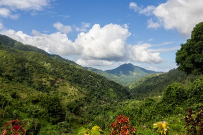 blue-mountains-jamaica
