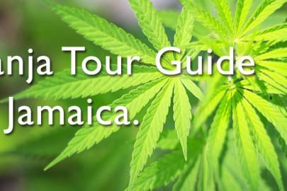 ganja-tour-guide-jamaica