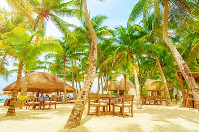 luxury-caribbean-hotel-beach-side-palm-trees